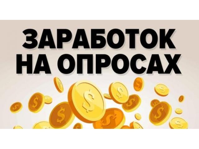 Заработок на платных опросах в интернете. Высокий доход в свободное время! - 1